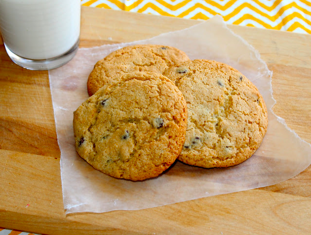 5 healthier cookie recipes 360 family nutrition for Low fat chocolate biscuits